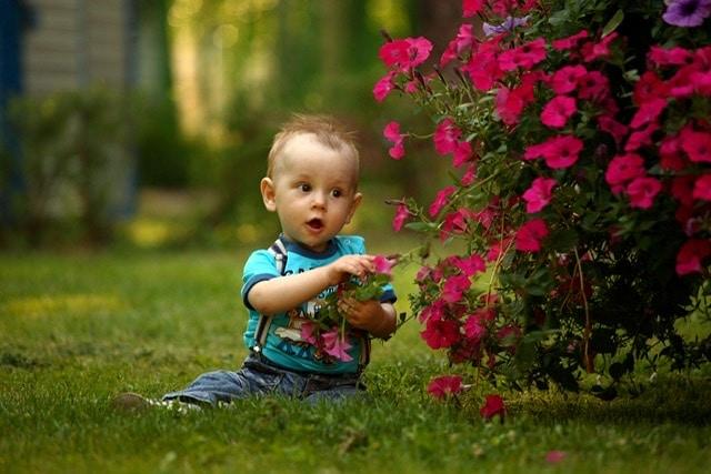 Bebé sentado con flores