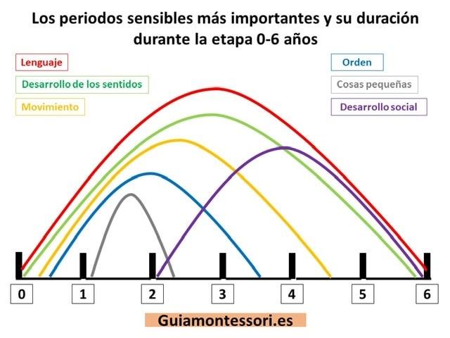 Periodos sensibles 0 a 6