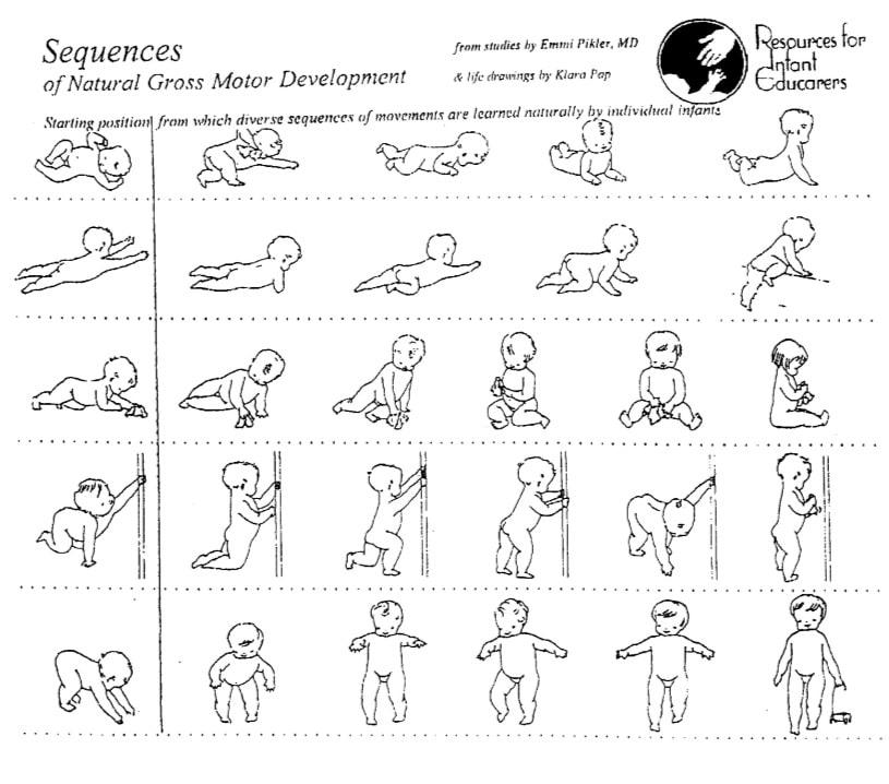 Gráfica desarrollo motor