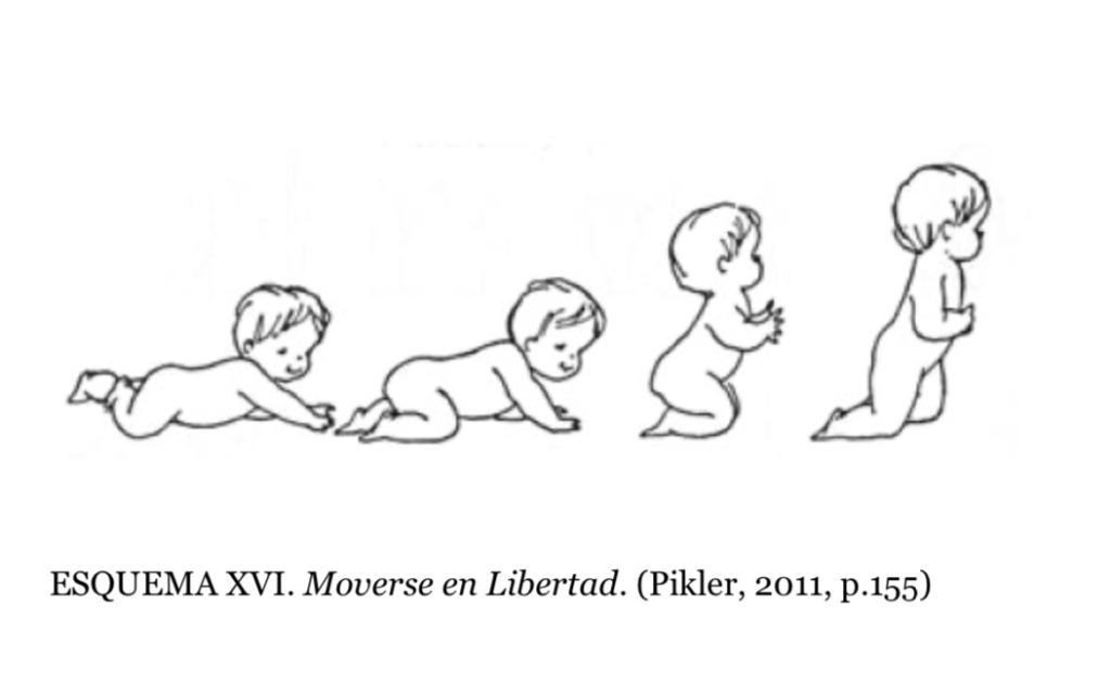 desarrollo postural